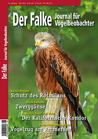 2014-06-Cover