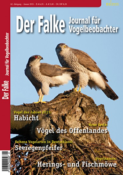 2015-01-Cover