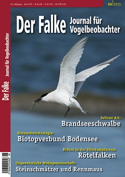 2015-06-Cover