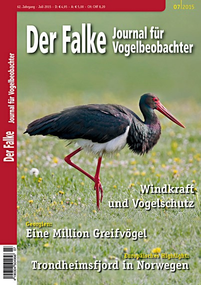 2015-07-Cover