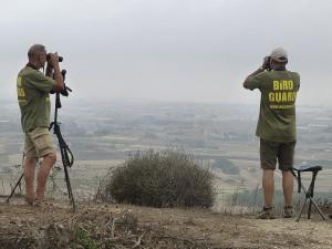 Birdguards bei der Überwachung der Zugrouten auf Malta. (Foto: Komitee gegen den Vogelmord)
