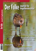 2016-10-cover