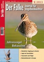 2013-01-cover