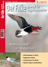 2013-02-cover