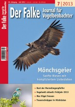 2013-07-cover