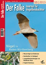 2013-11-cover