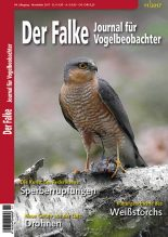 2017-11-Cover