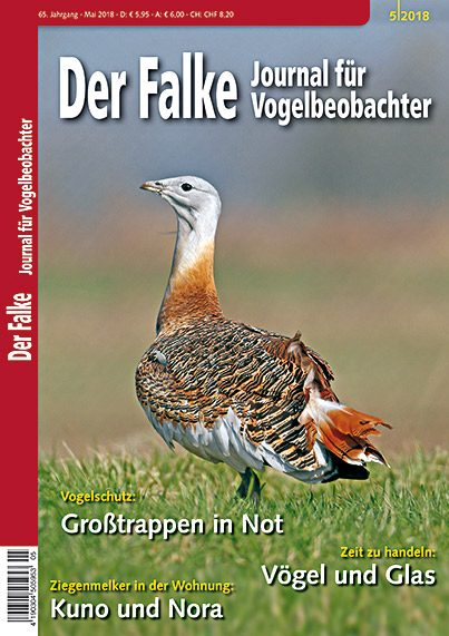 2018-05-Cover